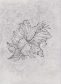 flower600